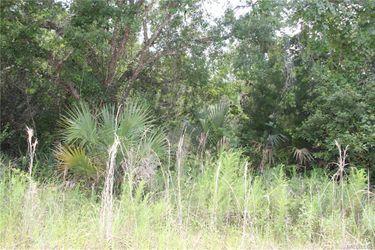 6520-Nature-Hernando-FL-34442